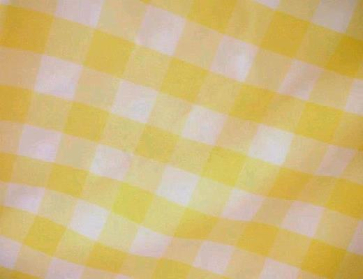 Where to find YELLOW   WHITE 1  CHECK LINEN in Petoskey