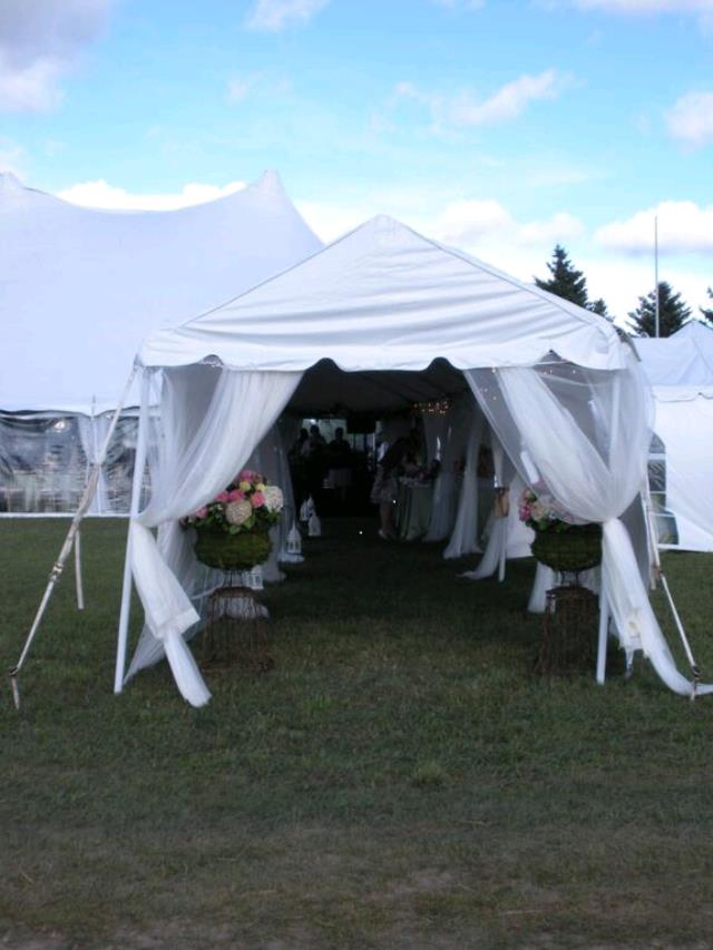Where to find TENT, 9 X 10 MARQUEE in Petoskey